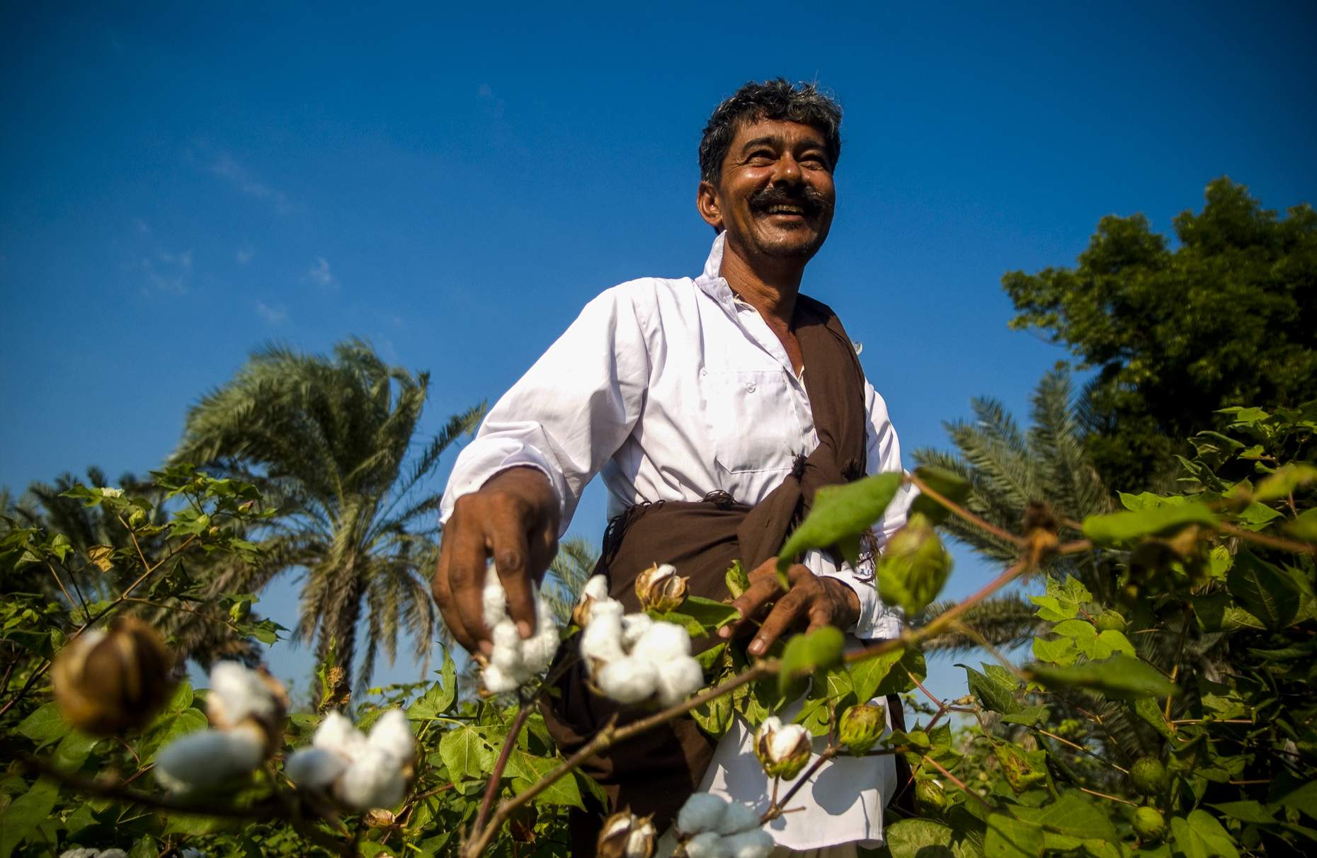 Fairtrade cotton farmer, India