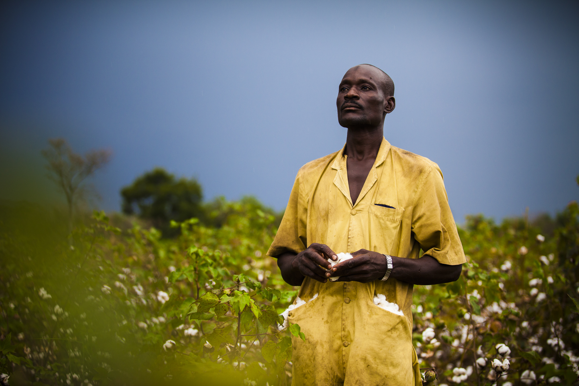 Fairtrade cotton farmer, Keita, Mali